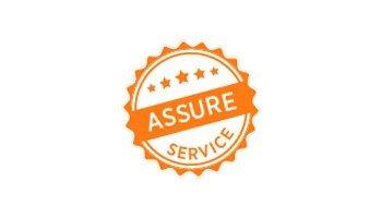 Limitless EV - Assure Service